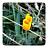 mydarkstar_logo_48x48